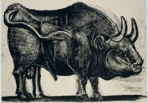10university-bull1-custom1